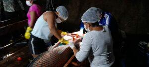 Governo do Amazonas coordena a 7ª Pesca Manejada do Pirarucu no rio Abufari, em Tapauá